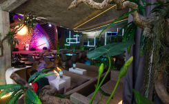 Gymage Lounge Resort, terraza noche